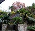 Ботанический сад пансионата в п. Отрадное, Ялта01