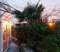 Ботанический сад пансионата в п. Отрадное, Ялта07