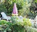 Ботанический сад пансионата в п. Отрадное, Ялта09