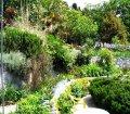 Ботанический сад пансионата в п. Отрадное, Ялта10