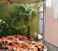 Аренда двухкомнатной квартиры с двориком возле моря в Ялте. 17