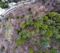 Продажа земельного участка подл строительство многоквартирного дома в Ялте. 12