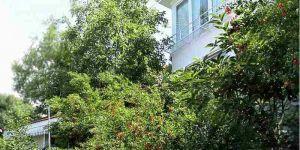 Снять коттедж с 1 спальней в Гурзуфе Крым