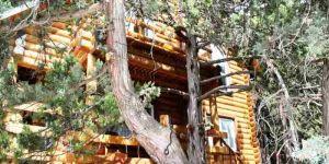 Сдается деревянный дом - сруб в Гаспре Крым