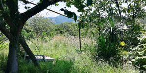 Купить земельный участок в Уч - Дере Сочи