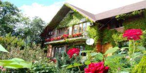 Купить дом с красивым двором и бассейном в Массандре Ялта