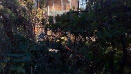 Земельный участок в п. Кипарисное
