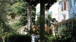 Квартира в Партените