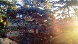 Дом - сруб с бассейном в Отрадном