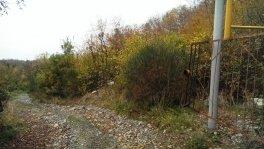 Земельный участок в с. Кипарисное, Алушта