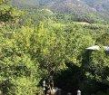 Аренда домовладения в горах над Ялтой, р-н Поляны Сказок. 43