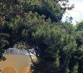 Аренда апартаментов в Гаспре, большая Ялта 06